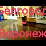 #25 Белгород - Воронеж. 10 марта